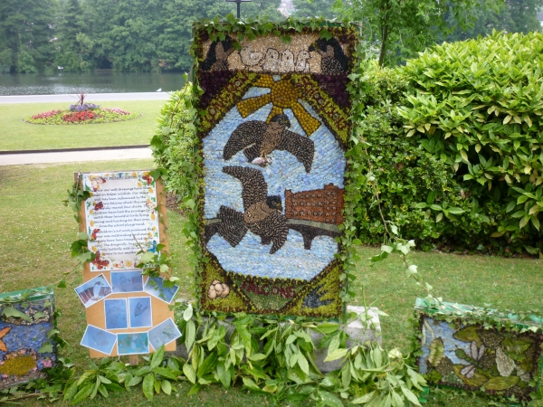 Perigrine Well Dressing